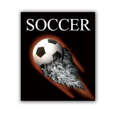 Tyndell PS-201 Soccer Easel Mount