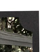 Tyndell Mascot Folder 4x5 - Clearance